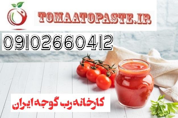 رب گوجه فرنگی بریکس 36 38 | رب گوجه فرنگی بریکس 36 38